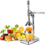 GOTOTOP Manual Fruit Juicer Commercial